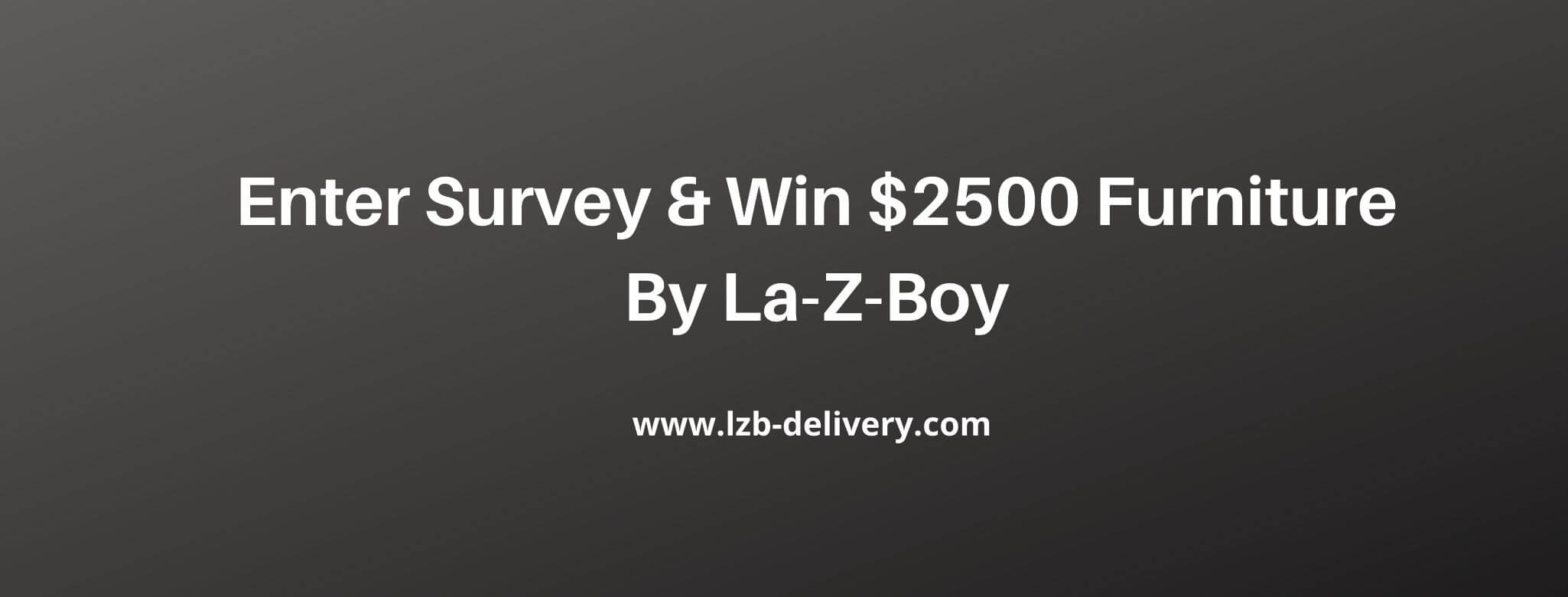www.lzb-delivery.com